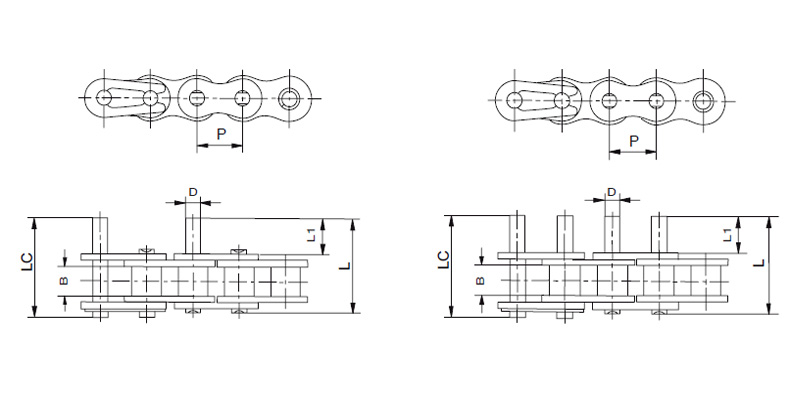 Roller Chains with Extended Pin : Roller Chains with